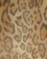 Сорочка из шелка с анималистичным принтом и съемной фурнитурой Grazia'lliani  –  Деталь